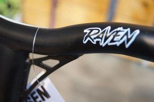 raven3-300x199-2
