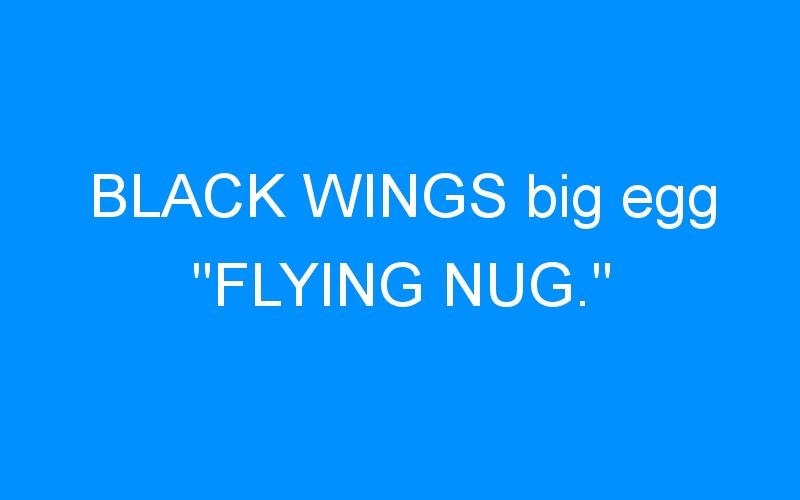 BLACK WINGS big egg «FLYING NUG.»