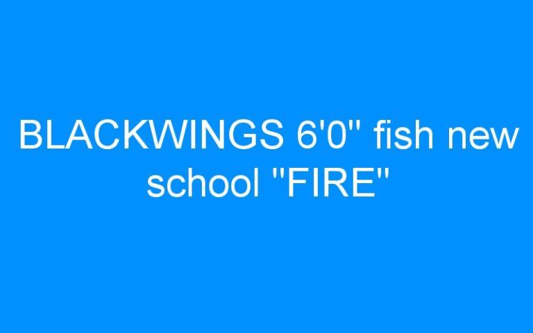 BLACKWINGS 6'0″ fish new school «FIRE»