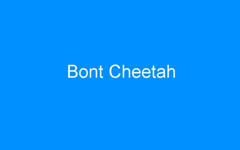 Bont Cheetah