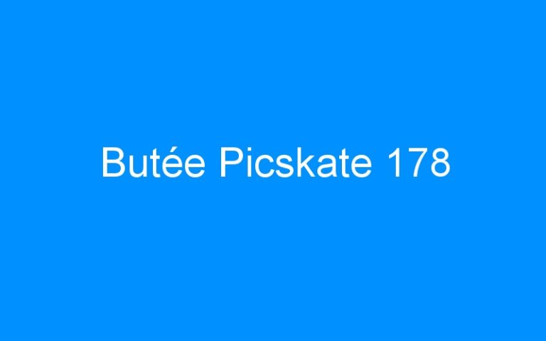 Butée Picskate 178
