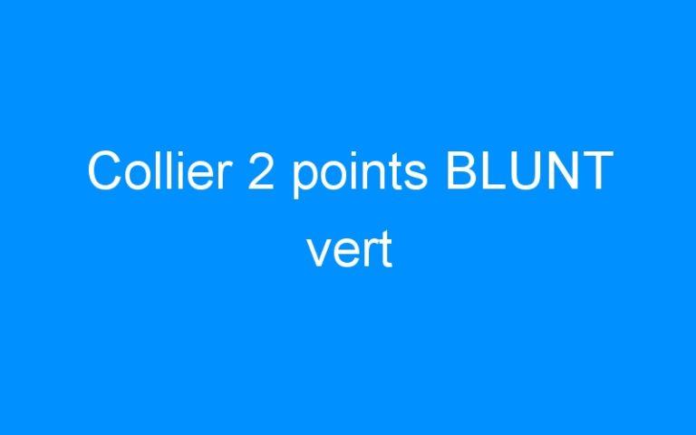 Collier 2 points BLUNT vert