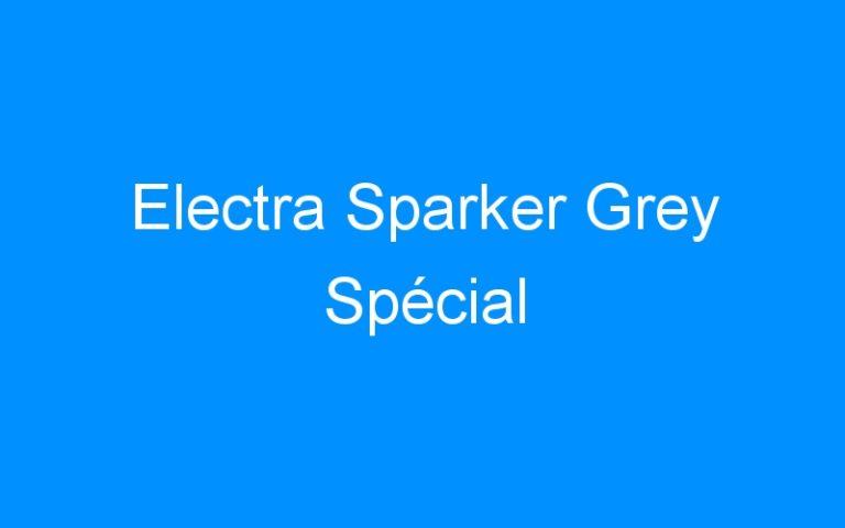 Electra Sparker Grey Spécial