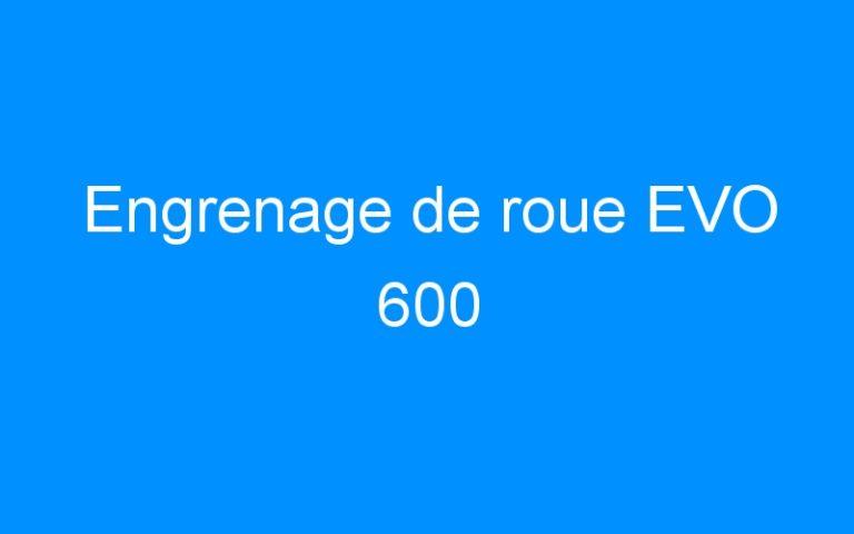Engrenage de roue EVO 600