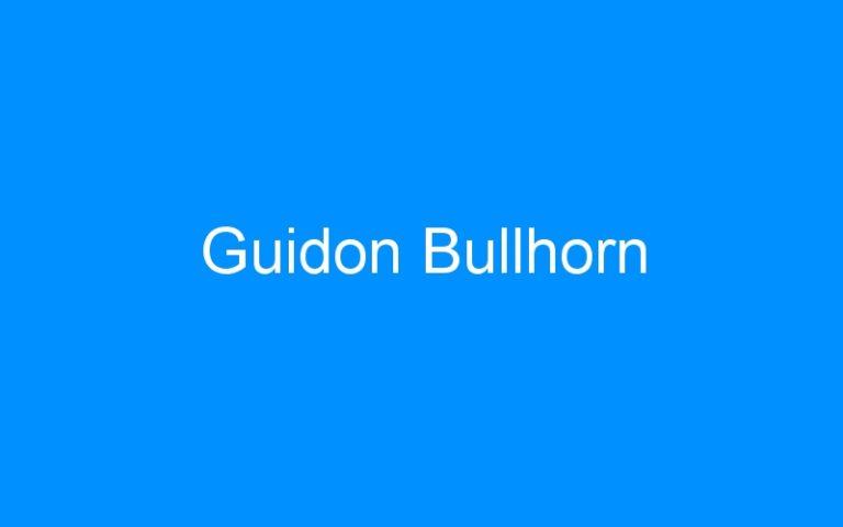 Guidon Bullhorn