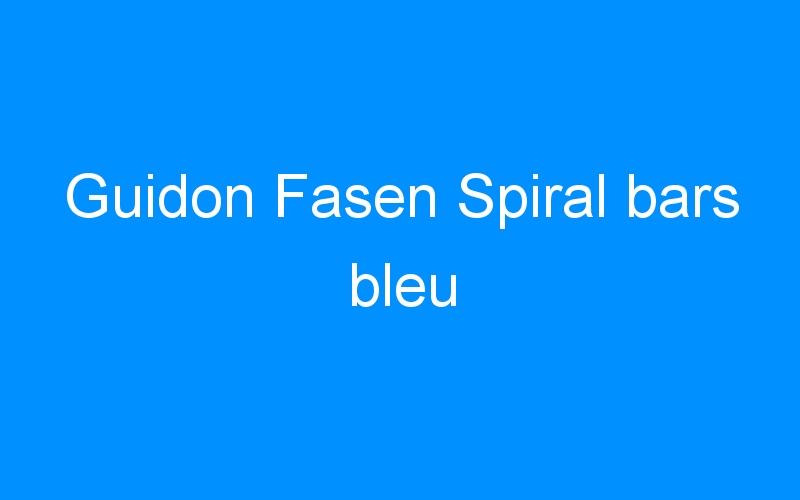 Guidon Fasen Spiral bars bleu