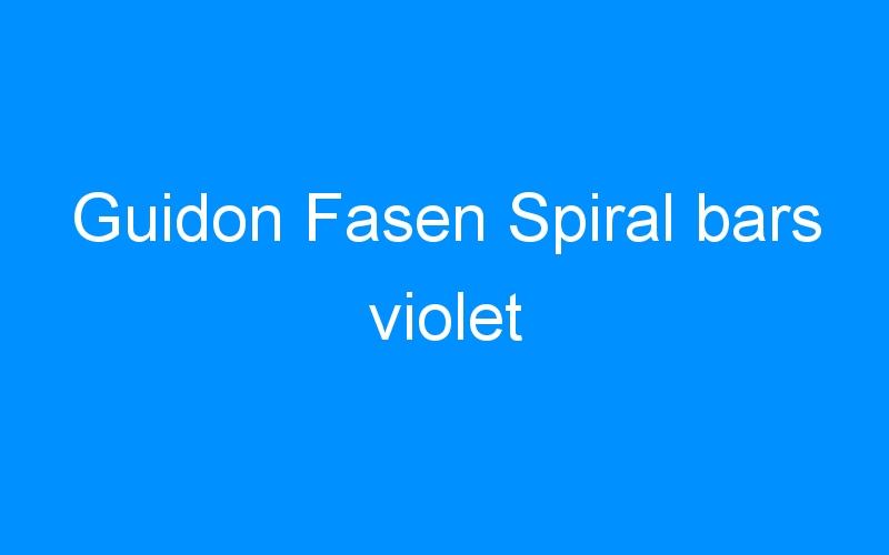 Guidon Fasen Spiral bars violet