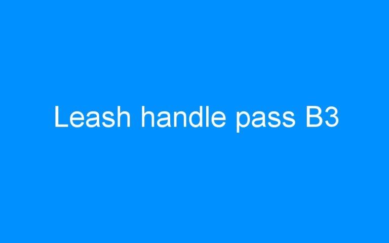 Leash handle pass B3