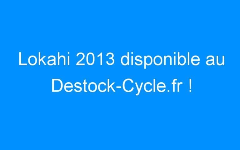 Lokahi 2013 disponible au Destock-Cycle.fr !