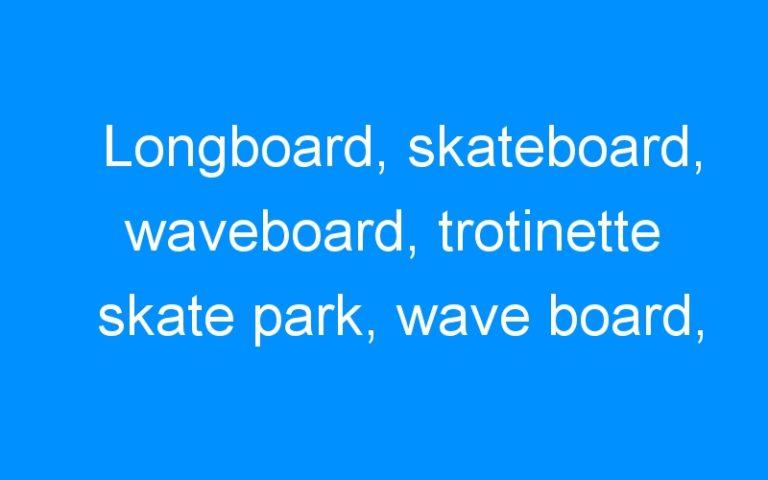 Longboard, skateboard, waveboard, trotinette skate park, wave board, skate electrique : le streetsurfing est en marche à Montpellier!