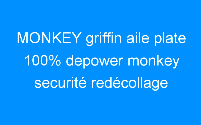 MONKEY griffin aile plate 100% depower monkey securité redécollage Destock-Cycle.fr kitesurf roller palavas magasin de sport
