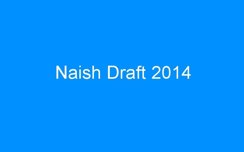 Naish Draft 2014
