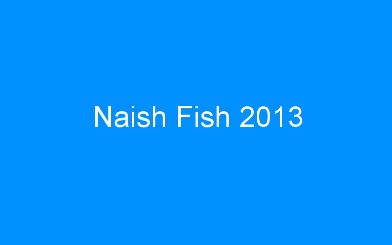 Naish Fish 2013