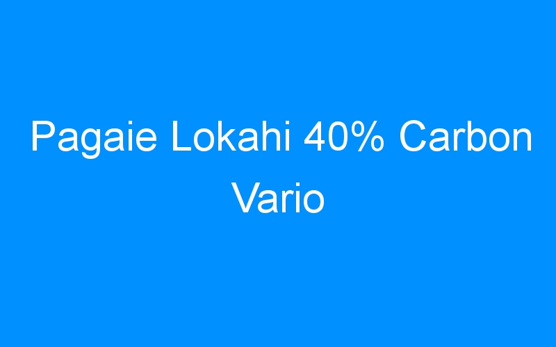 Pagaie Lokahi 40% Carbon Vario