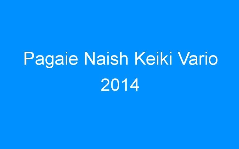 Pagaie Naish Keiki Vario 2014