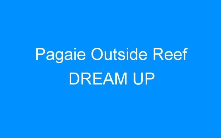 Pagaie Outside Reef DREAM UP