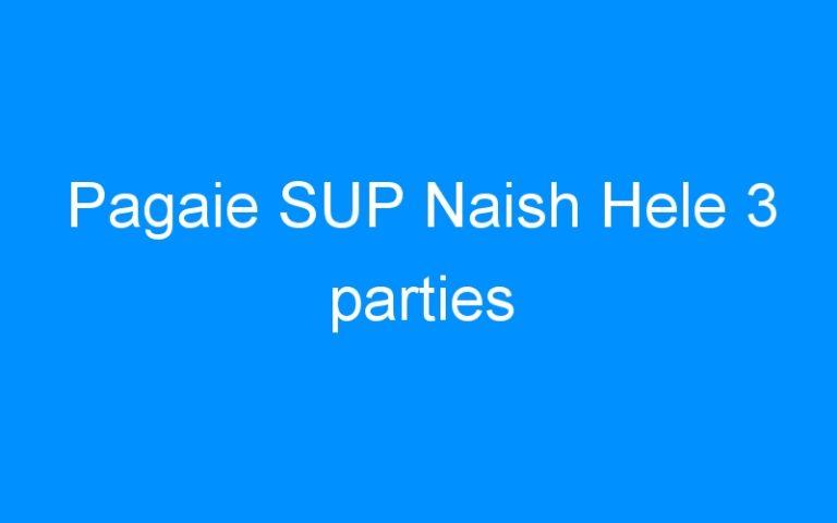 Pagaie SUP Naish Hele 3 parties