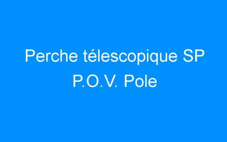 Perche télescopique SP P.O.V. Pole