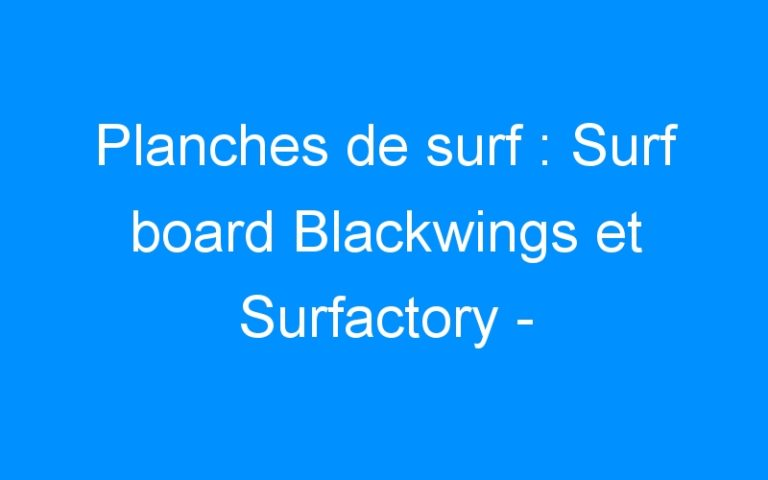 Planches de surf : Surf board Blackwings et Surfactory – Destock-Cycle.fr