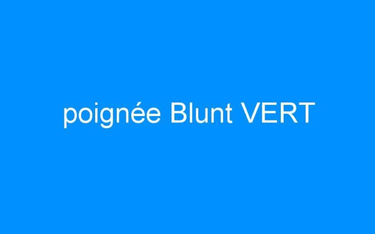 poignée Blunt VERT