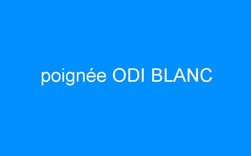 poignée ODI BLANC
