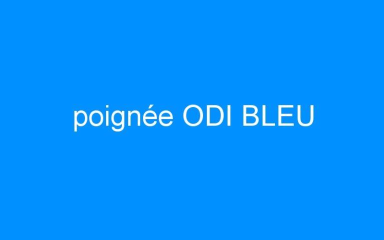 poignée ODI BLEU