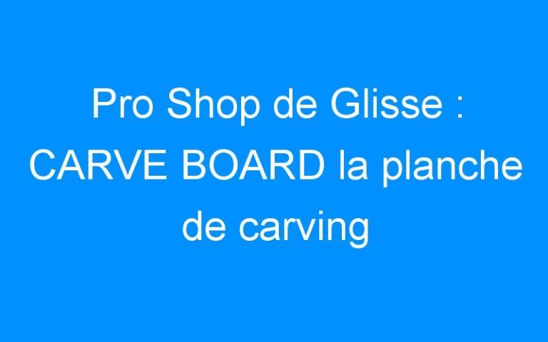 Pro Shop de Glisse : CARVE BOARD la planche de carving