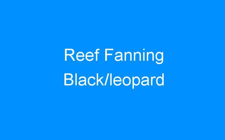 Reef Fanning Black/leopard