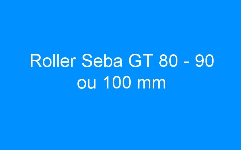 Roller Seba GT 80 – 90 ou 100 mm