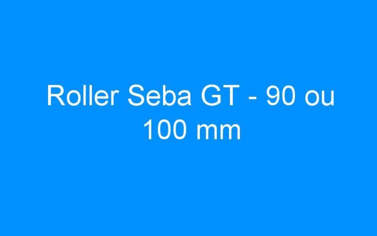 Roller Seba GT – 90 ou 100 mm