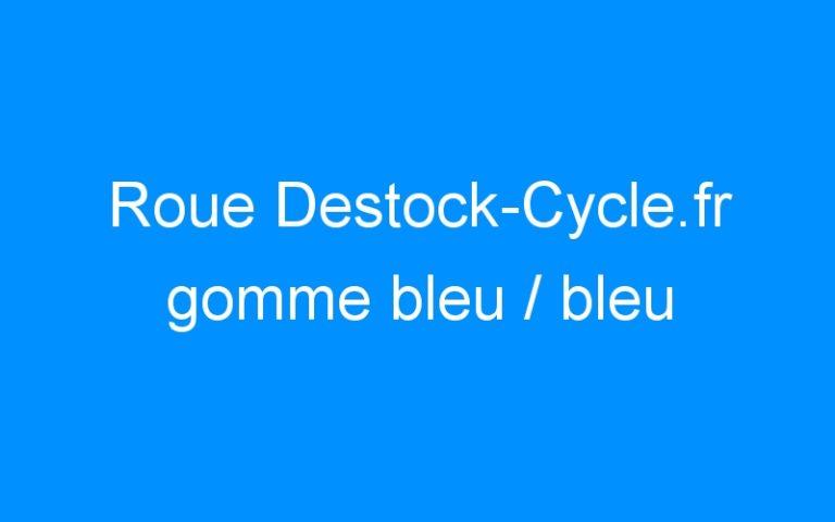 Roue Destock-Cycle.fr gomme bleu / bleu