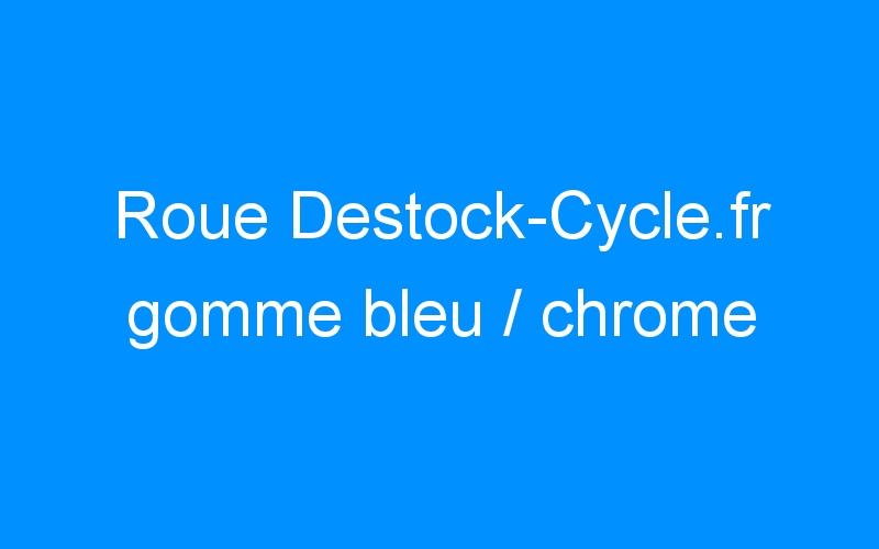 Roue Destock-Cycle.fr gomme bleu / chrome