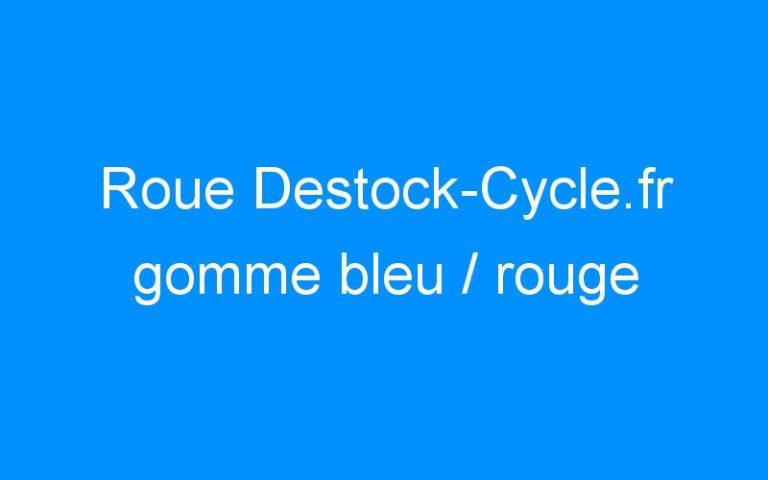 Roue Destock-Cycle.fr gomme bleu / rouge