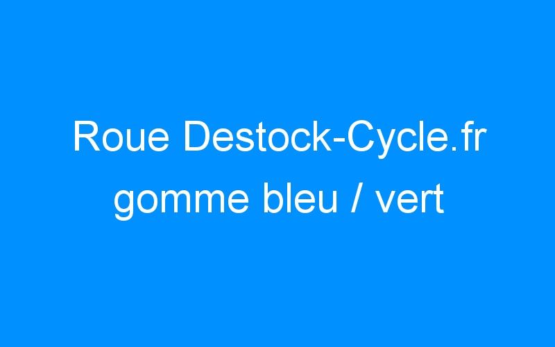 Roue Destock-Cycle.fr gomme bleu / vert
