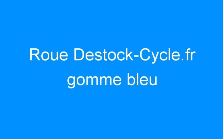 Roue Destock-Cycle.fr gomme bleu