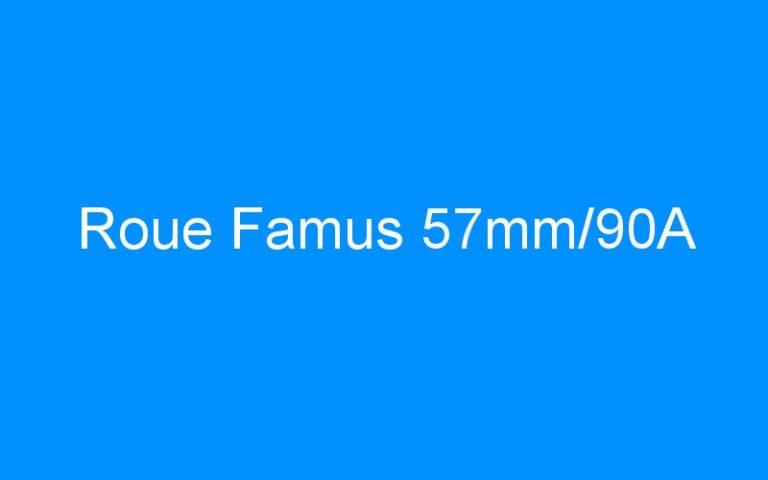 Roue Famus 57mm/90A