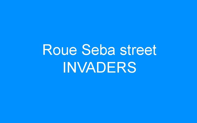 Roue Seba street INVADERS