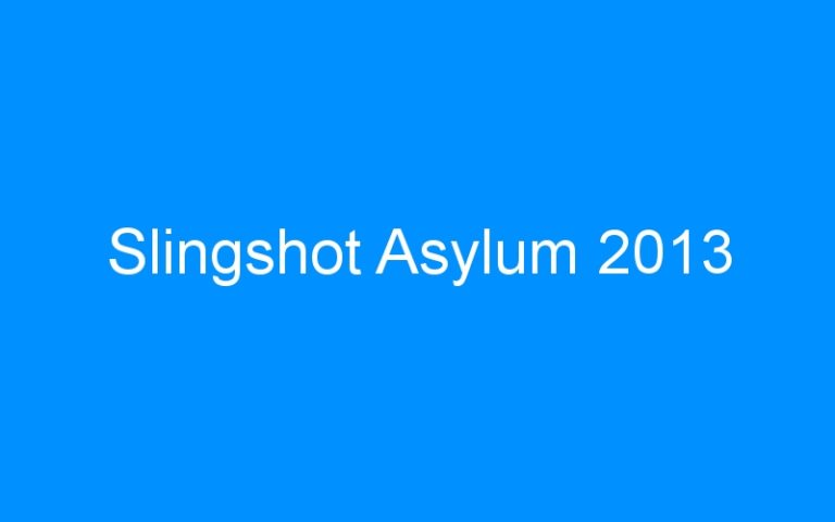 Slingshot Asylum 2013
