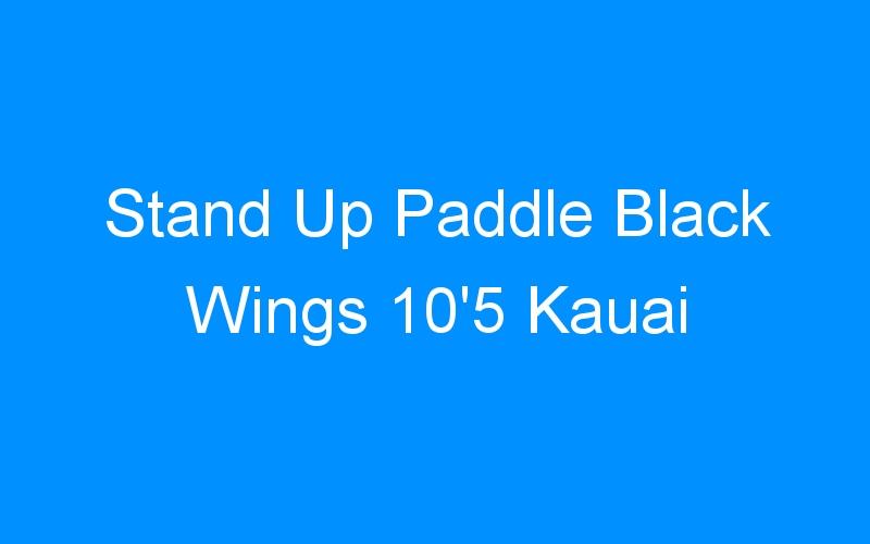 Stand Up Paddle Black Wings 10'5 Kauai