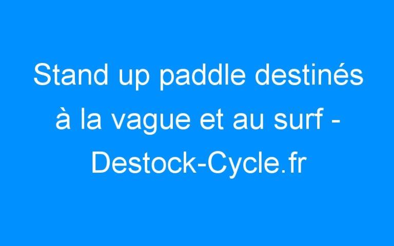 Stand up paddle destinés à la vague et au surf – Destock-Cycle.fr