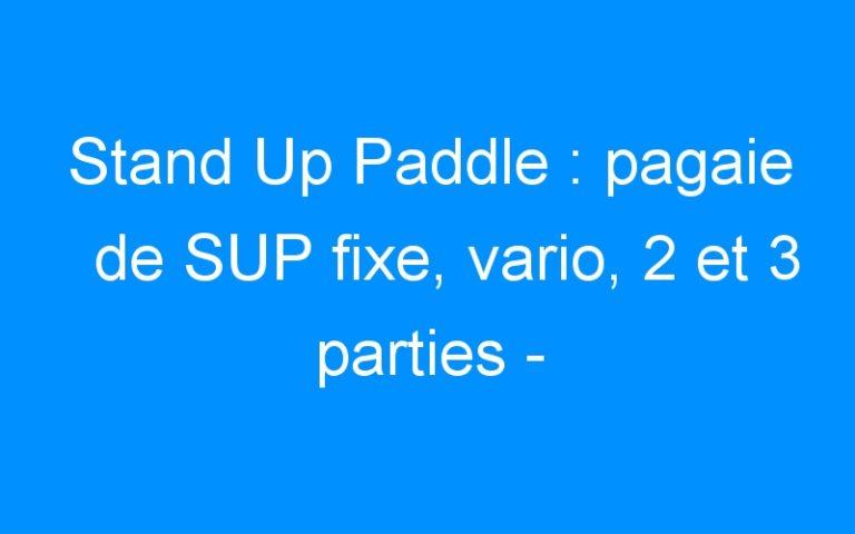 Stand Up Paddle : pagaie de SUP fixe, vario, 2 et 3 parties – Destock-Cycle.fr