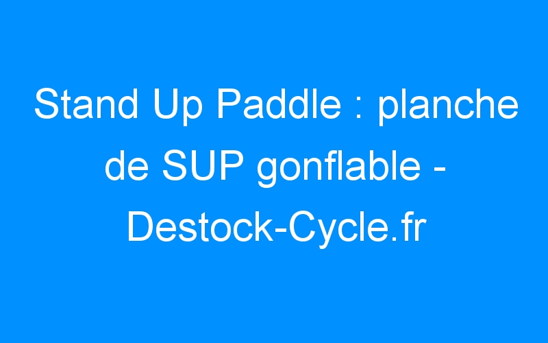 Stand Up Paddle : planche de SUP gonflable – Destock-Cycle.fr