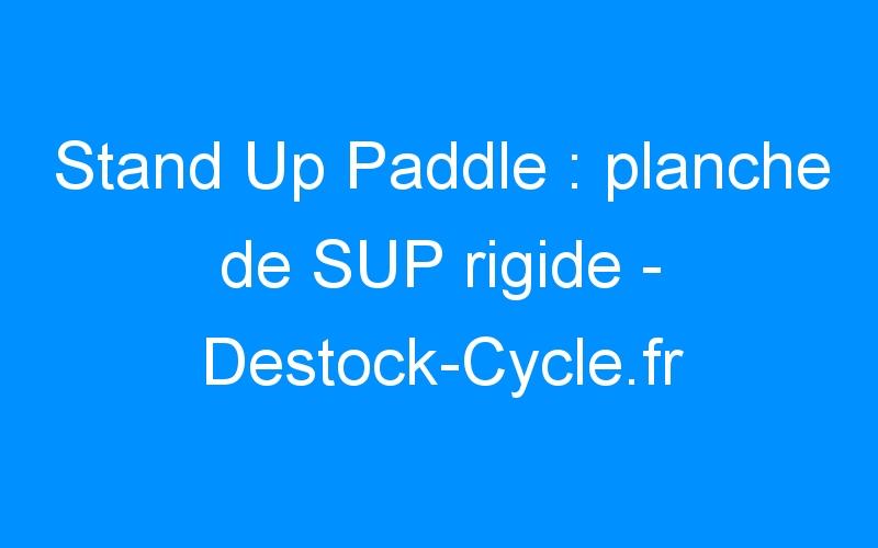 Stand Up Paddle : planche de SUP rigide – Destock-Cycle.fr