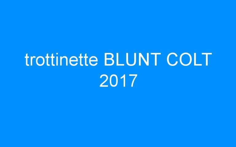 trottinette BLUNT COLT 2017