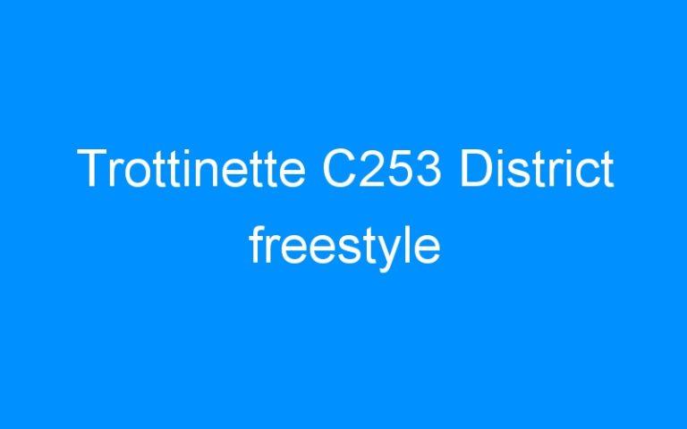 Trottinette C253 District freestyle