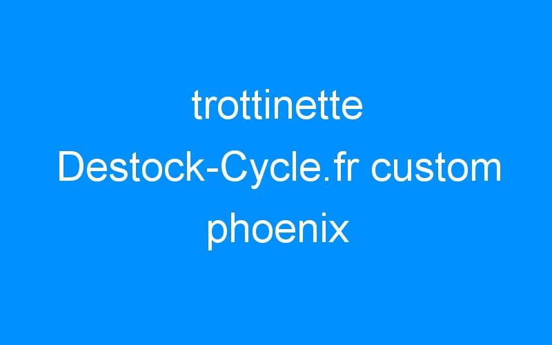 trottinette Destock-Cycle.fr custom phoenix