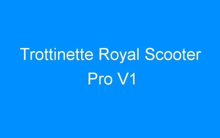 Trottinette Royal Scooter Pro V1