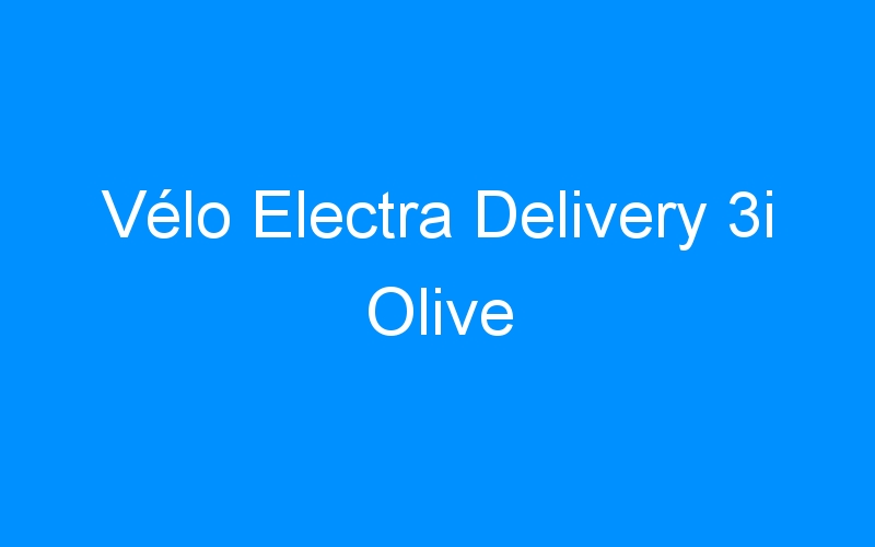 Vélo Electra Delivery 3i Olive
