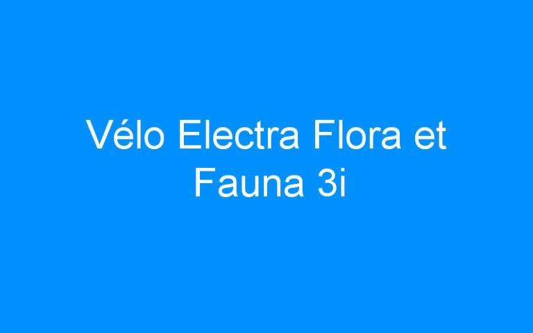 Vélo Electra Flora et Fauna 3i