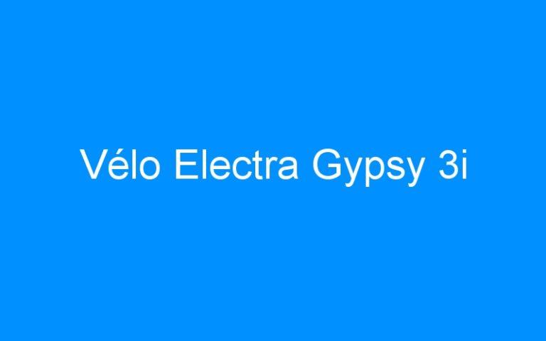 Vélo Electra Gypsy 3i